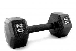 bodybuiding aloeforever 300x200 Bodybuilder e proteine di soia